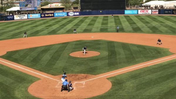 Twins pitcher Luke Farrell pitches to Rays outfielder Garrett Whitley